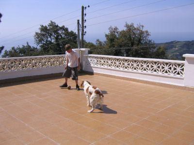Dylan de hond